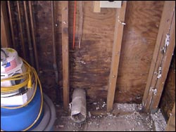 Mold In Bathroom Wall Health molds - the hidden danger